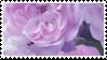pink flowers  stamp by sosse123