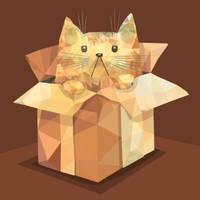 Polygon Cat In A Box by Siriliya