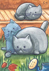 ACEO Cats in the village by Siriliya