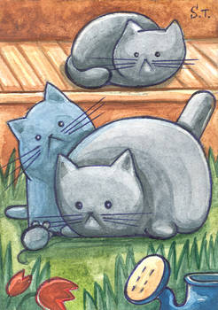 ACEO Cats in the village