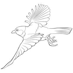 Titmouse vector contour by Siriliya