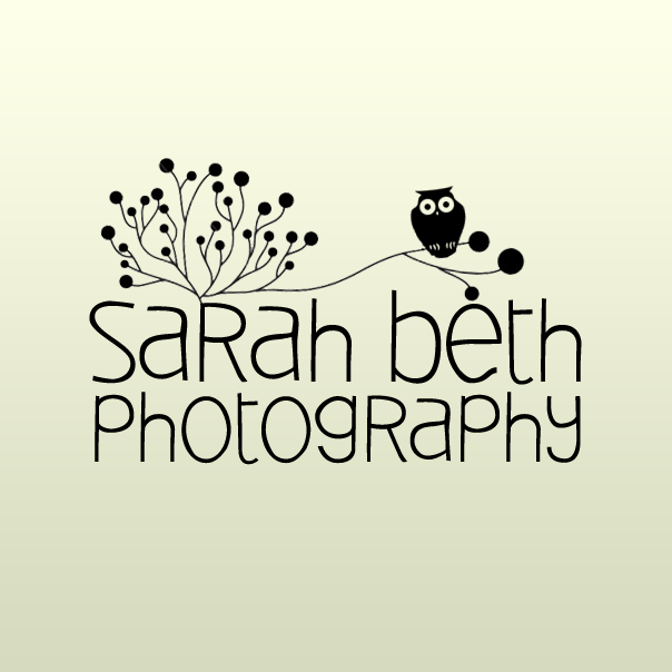 Cute Photography Logo Sarah Beth Photography Logo by