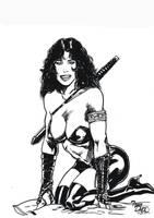 Lady Katana by tonydax
