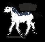 A2226 - Nordanner Foal Design