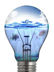 Lightbulb Habitat by bigrdesign