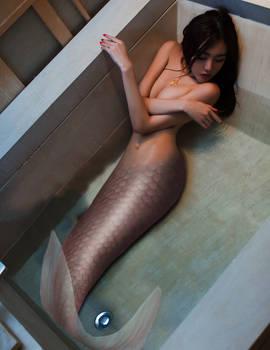 Mermaid PTS #61