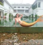 Mermaid PTS #85