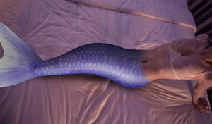 Mermaid PTS #118