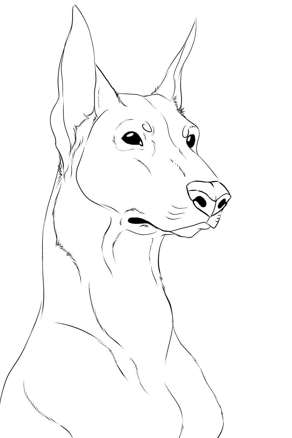 Woman Face Line Drawing Png : Doberman lineart transparent bg by socialbutter on deviantart