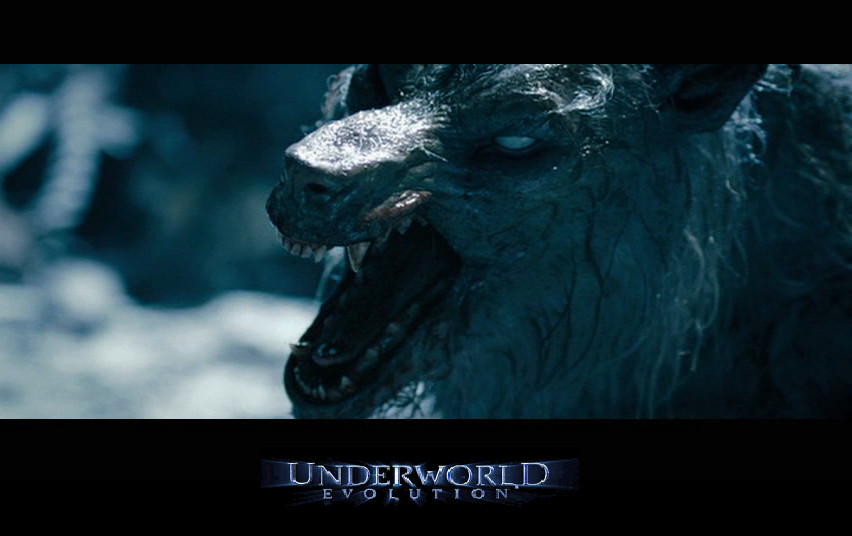 Underworld 2: William ... Underworld Evolution Wallpaper
