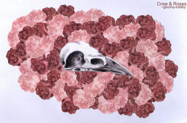 Crow and Roses by gloomy-lullaby