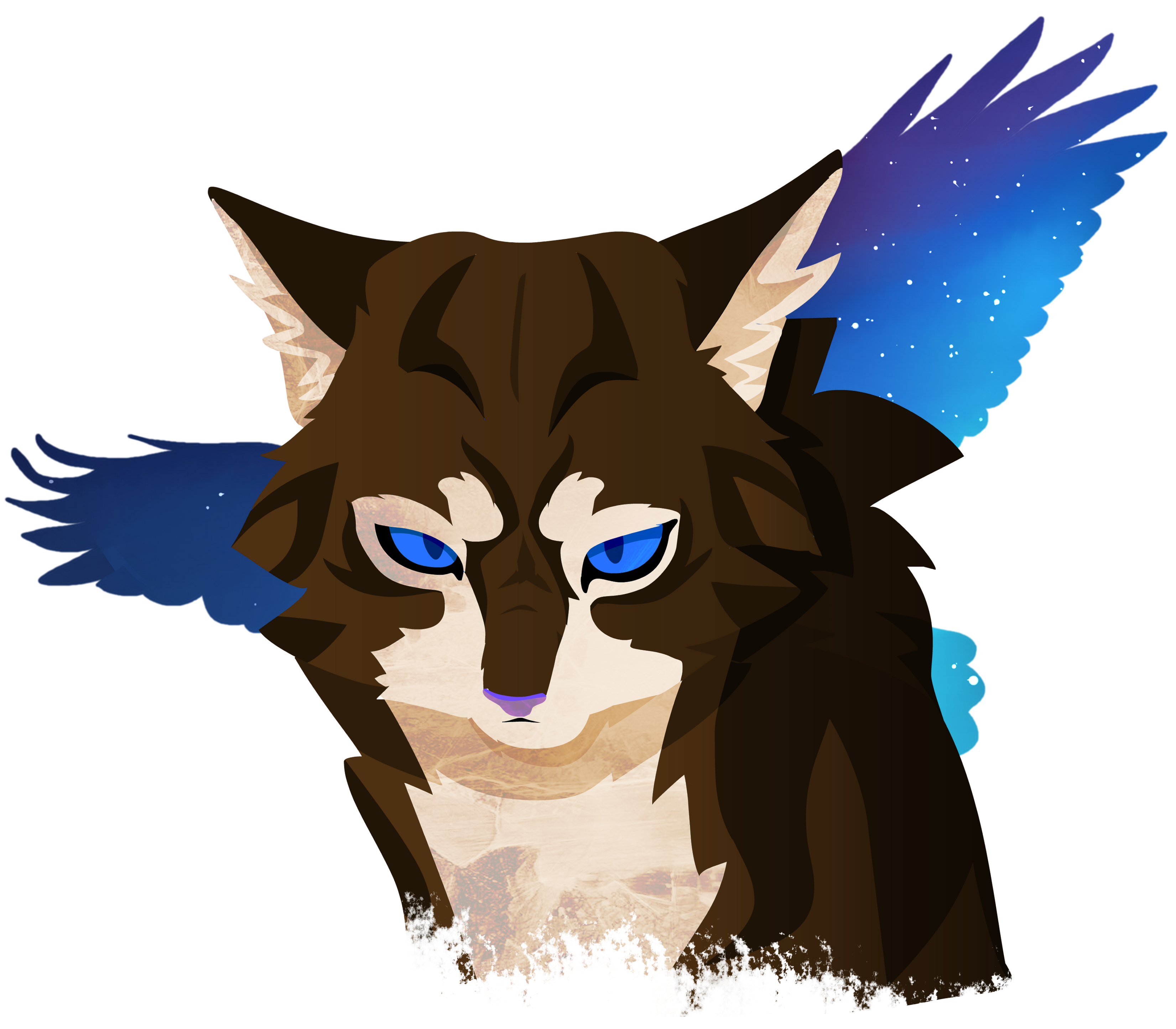 In Warrior Cats Roblox What Does App Mean