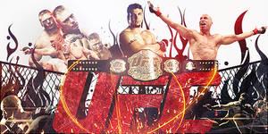 UFC Sign