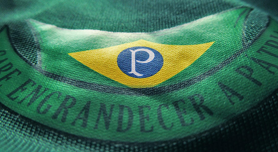 Camisa do Palmeiras - Macro 4 by Panico747