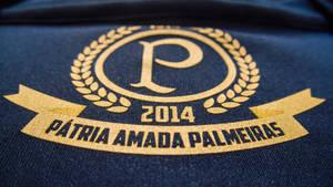 Patria Amada Palmeiras by Panico747