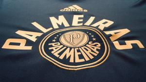 Palmeiras 2013/14 by Panico747