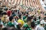 Palmeiras - Torcida