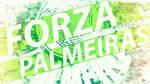 Forza Palmeiras 2