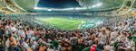 Palmeiras x Fluminense - Copa do Brasil by Panico747