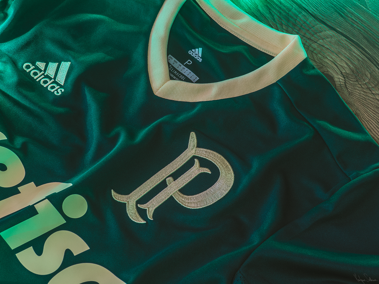 Palmeiras - Camisa 3 by Panico747