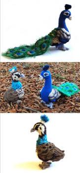 Mr and Mrs Peacock crochet