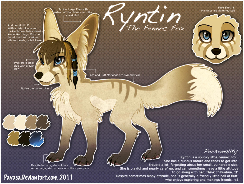 Ryntin Fennec Fox Ref by Payasa