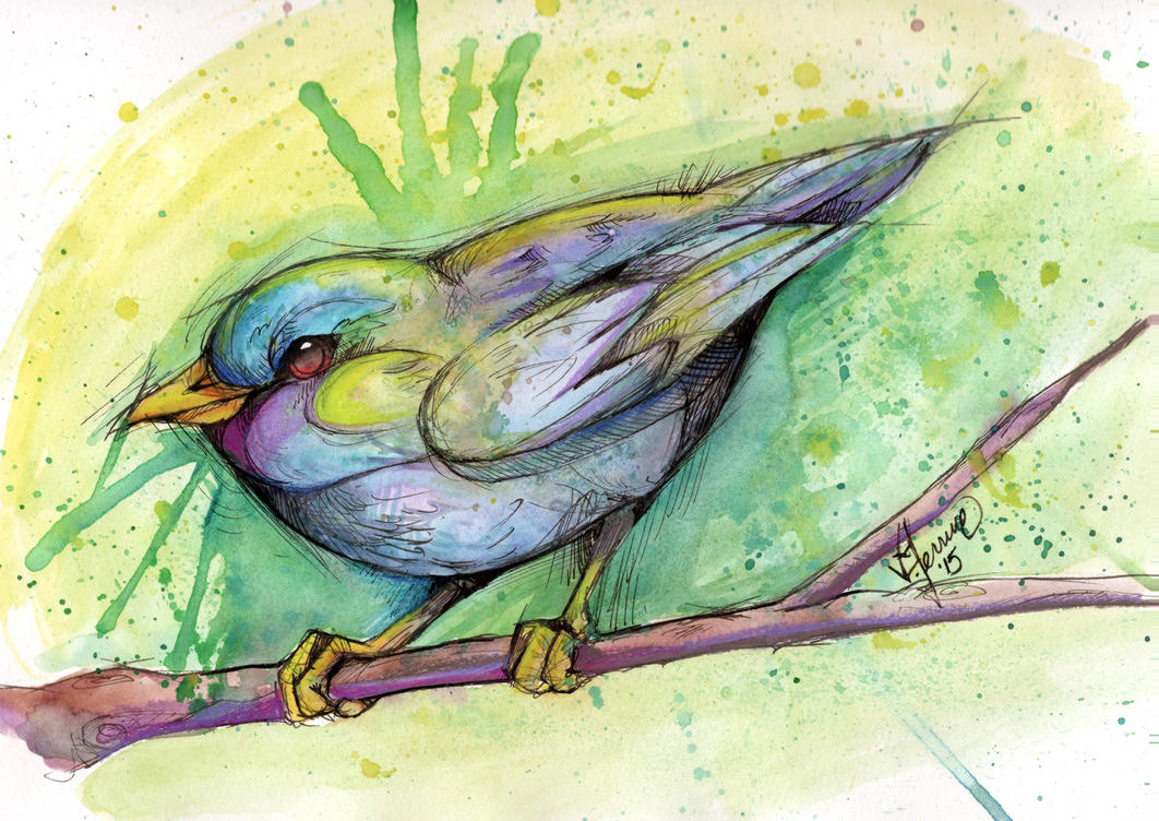 Watercolor Bird by Payasa