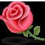 flor rosa Lady pink by TutosLadyPink