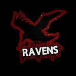 Dark Ravens Gaming by Isux