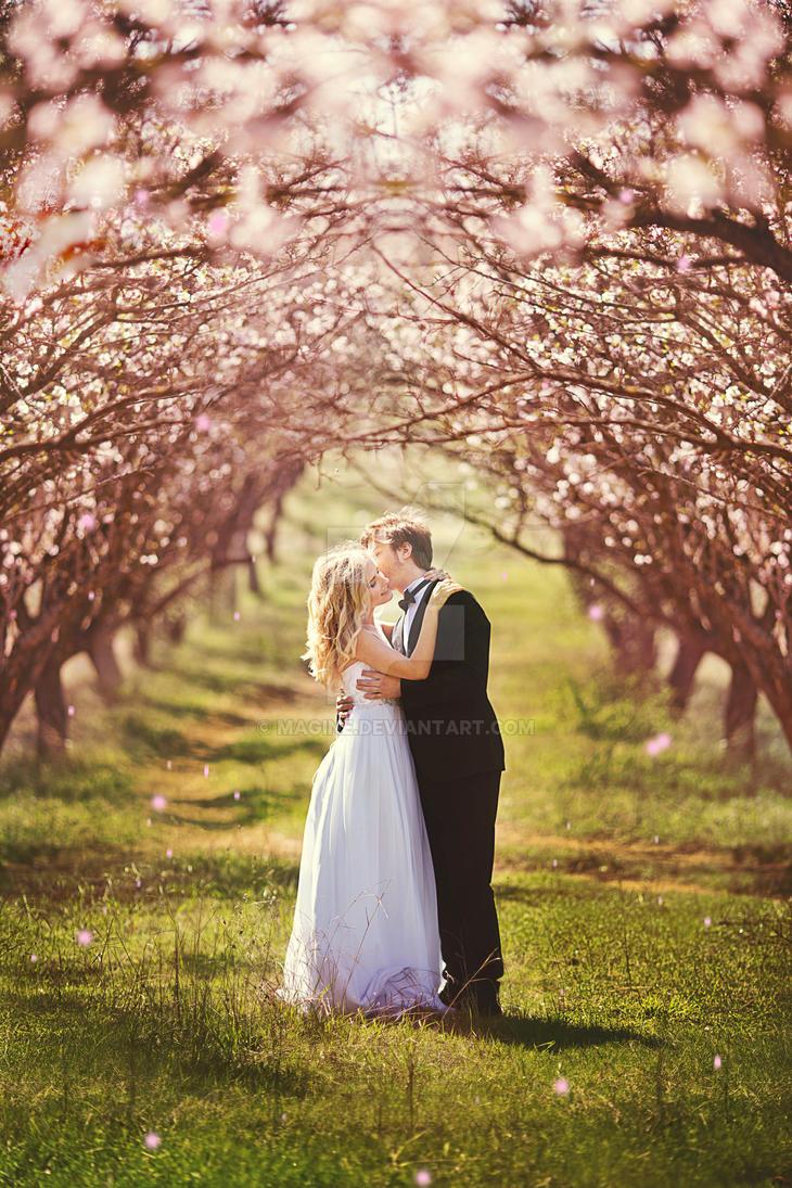 wedding by magine