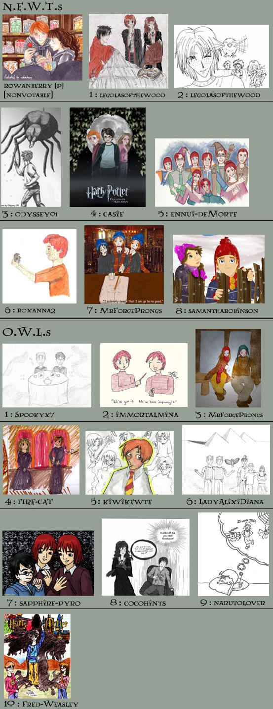 The 4th Contest Voting by weasleylovers