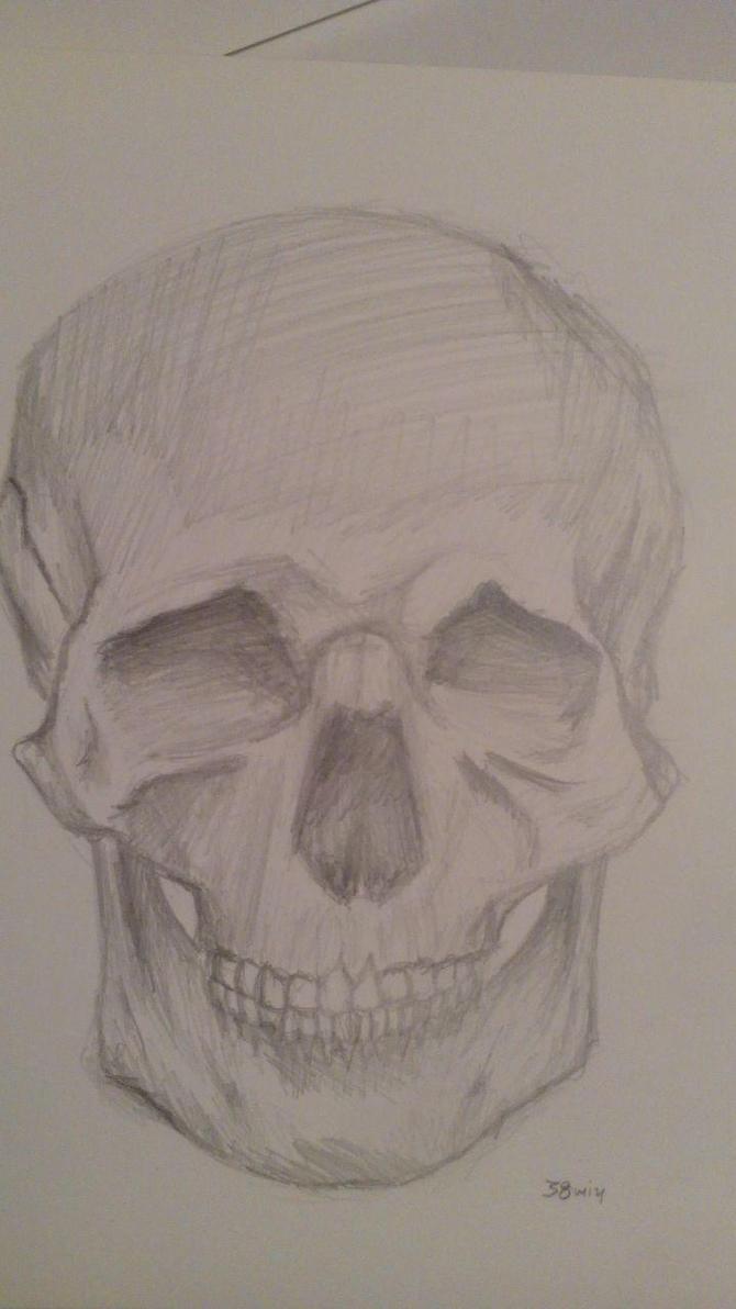 Skull by IreneAlg
