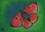 Butterfly by pinupsbykeeegan