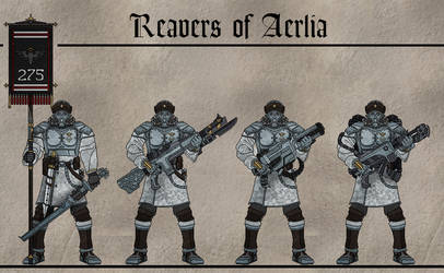 275th Reavers of Aerlia by Martechi