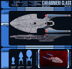 Carabinieri-Class Data Sheet