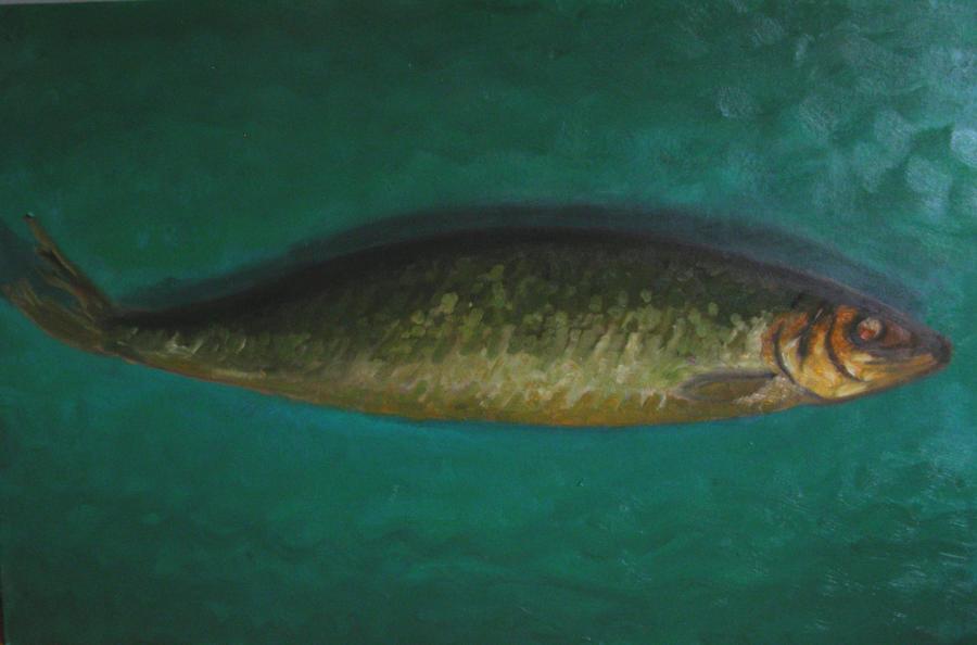 smoked herring by coruptia