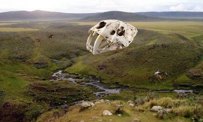 Khampa-Kaikulur-giant sabretooth skull in crater