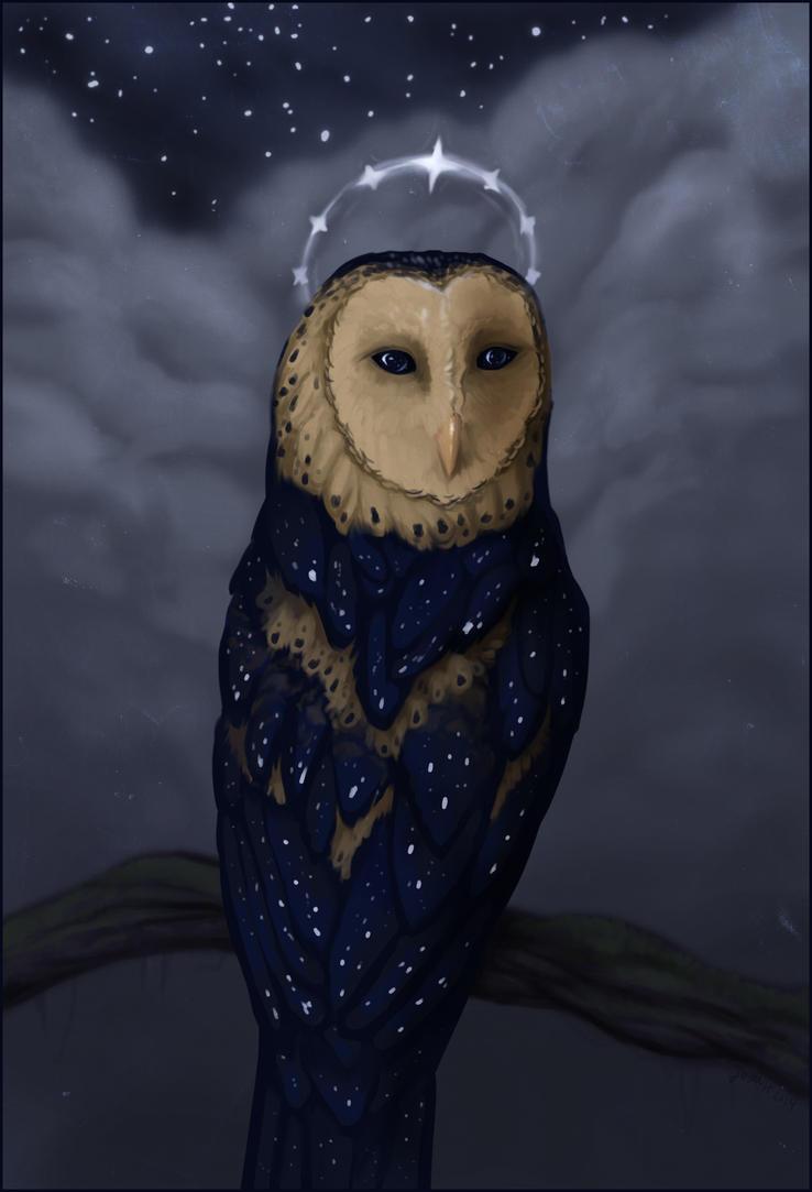 Starry Owl by nequita