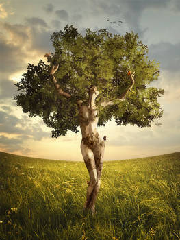 Nature Alive