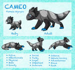 Cameo Adult Ref