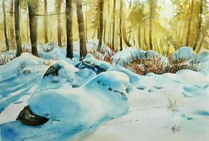 Winter came... by sezarka