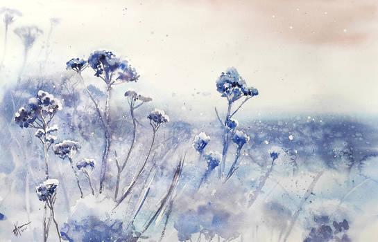 Winter is comming/Nadchodzi zima