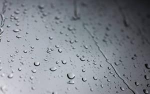 Rain 24 by rosebfischer