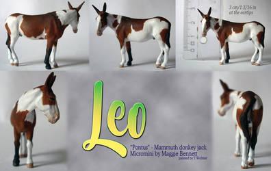 An Ass named Leo