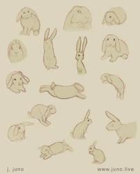 Bunnies Sketches 2 by J-Juno