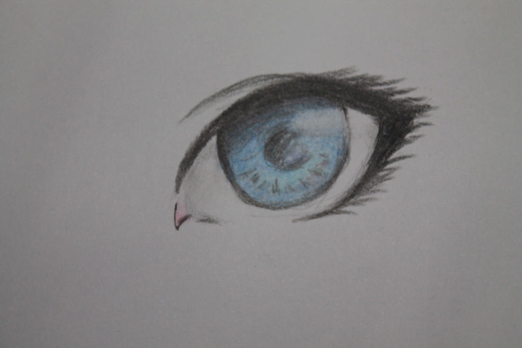 The way how to draw anime eyes use pencil colour by himawarinana