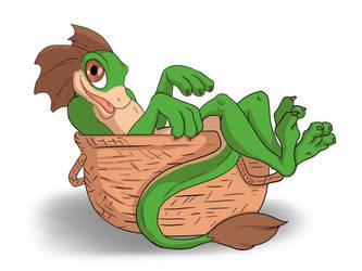 Drex in a Basket