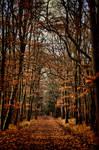 Kunraticky les