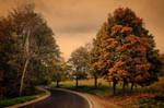 Autumn road II