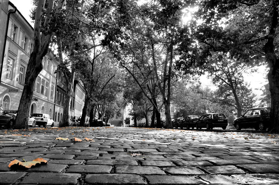 Kollarova ulice by tomsumartin